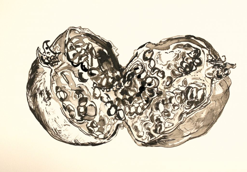Ink drawing of a split pomegranate