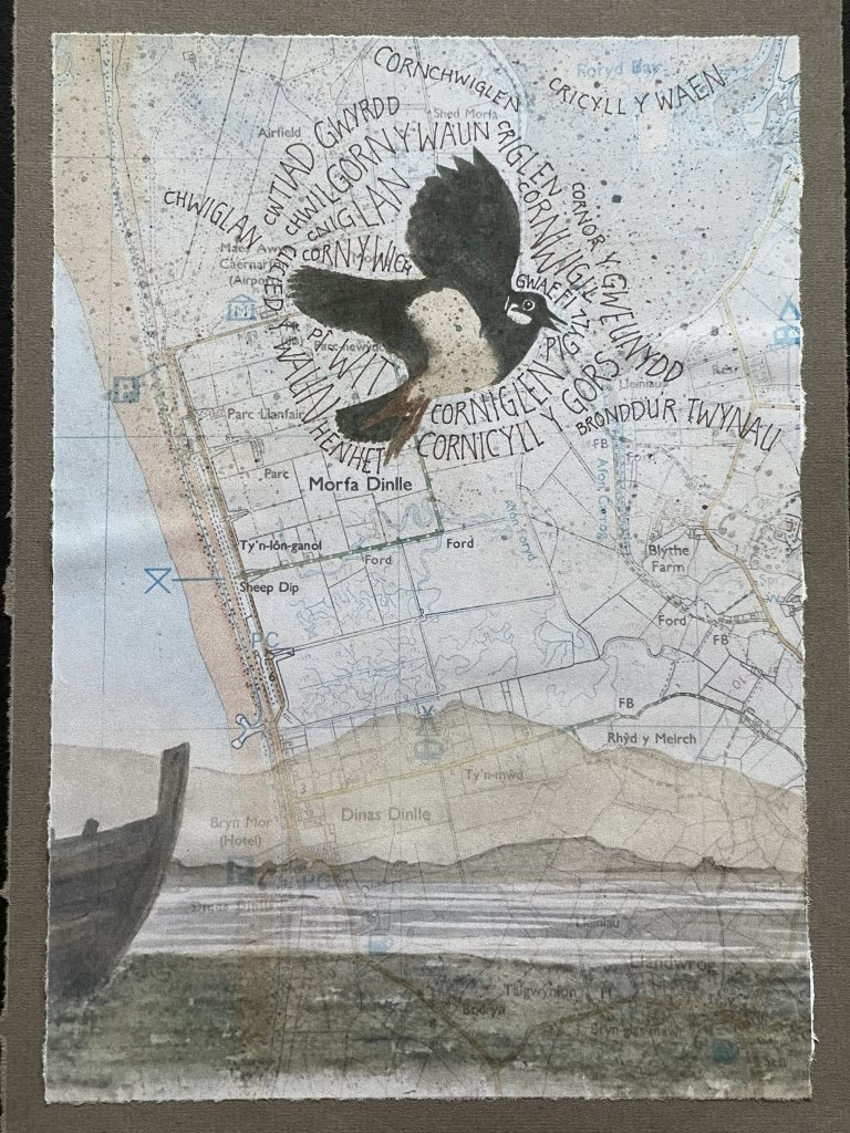 Bricolage with a painting of a lapwing and a variety of its Welsh names overlaid on a map of the area around Morfa Dinlle
