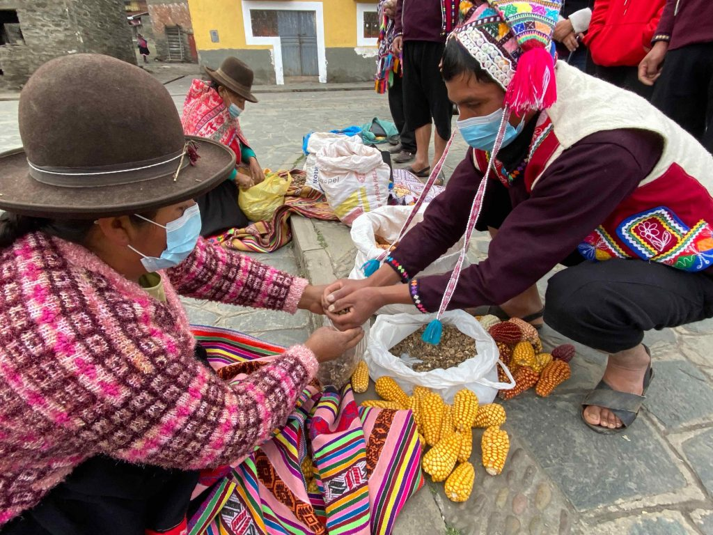 Exchange of corn and freeze-dried potato at a barter market in Lares, Peru