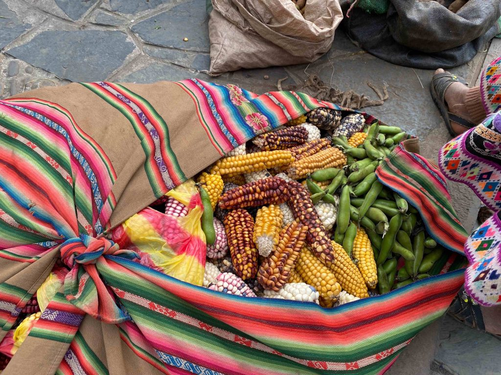 bundled maize and beans at a barter market in Lares, Peru