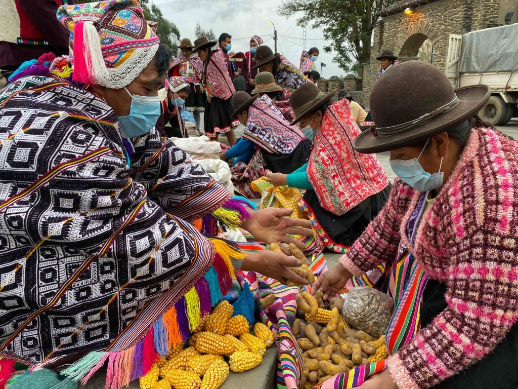 Exchange of ulluco and maize at a barter market in Lares, Peru